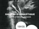 Gala de Gymnastique